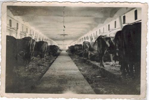 Vrejlev Kloster besøg januar søndag 1944 Gunnar Mølgaard elev højskole 4